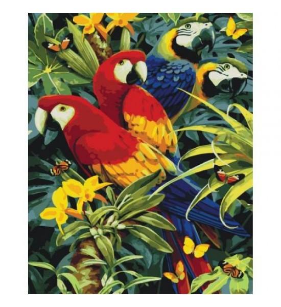 Картина по номерам Разноцветные попугаи КНО4028