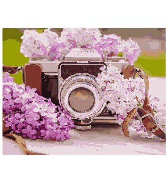 Картина по номерам Фотоаппарат с сиренью ★★★★ VA-1080