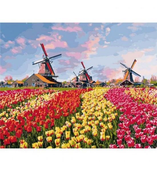 Картина по номерам Красочные тюльпаны Голландии ★★★★ КНО2224