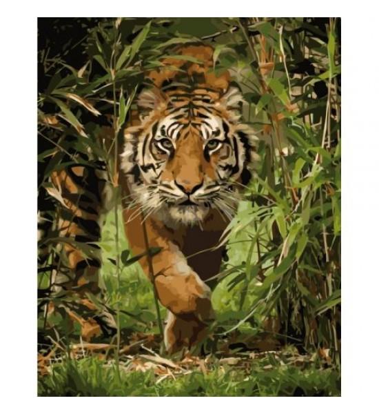 Картина по номерам Король джунглей КНО4043