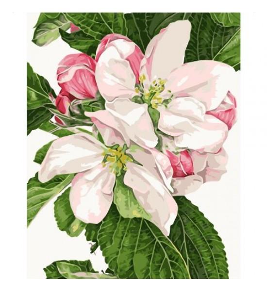 Картина по номерам Яблочное цветение ★★★★ VA-0819