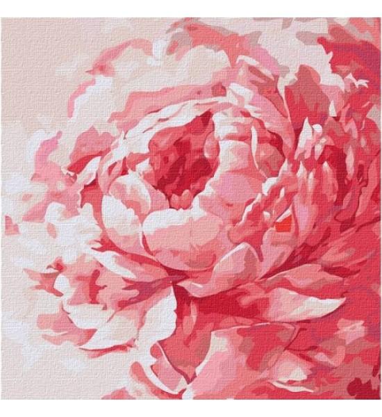 Картина по номерам Розовый пион ★★★★ КНО2943